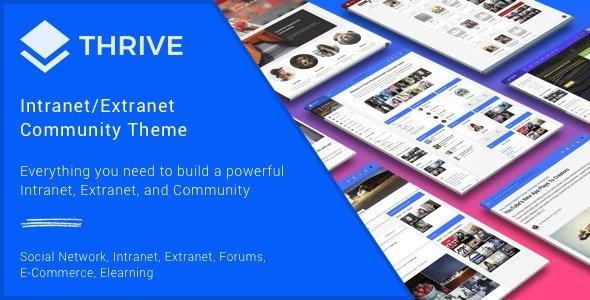 Thrive – Intranet & Community WordPress Theme Free Download