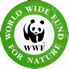 What is the full form of WWF